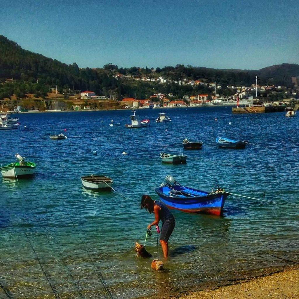 @laura_naturalmente Refrescando a Ulises y su prima Pitusa en el Puerto de Mugardos