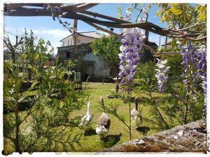 @laura_naturalmente Fervenza do Rexedoiro - Val do Dubra- A Coruña - Santiago - PR-G 202 RUTA DA FERVENZA - HACIENDO AMIGOS