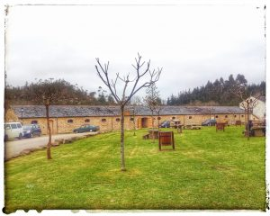 @laura_naturalmente Área Recreativa de Sargadelos para jugar como niños...  A Mariña Lucense. Norte de Lugo