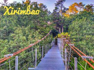 @laura_naturalmente el Xirimbao