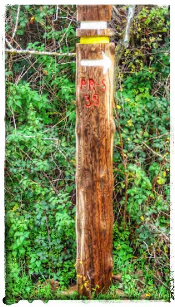 @lauranaturalmente  postes señalando la ruta, el nombre y la dirección.