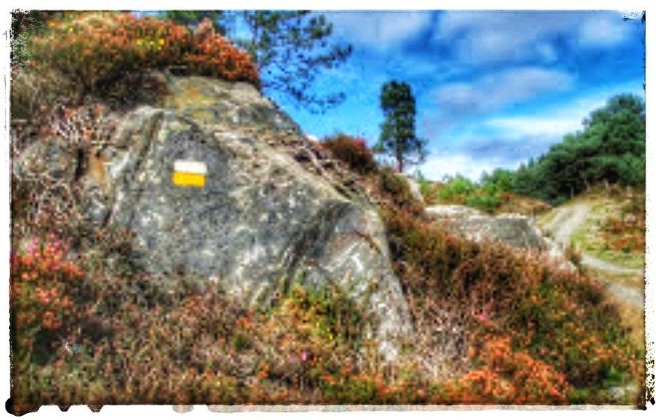 @lauranaturalmente señales en las piedras y rocas.